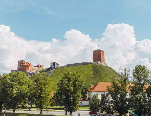 Gedimino kalno tvarkyba Vilniaus pilių valstybiniame kultūriniame rezervate
